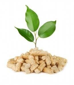 pellet green